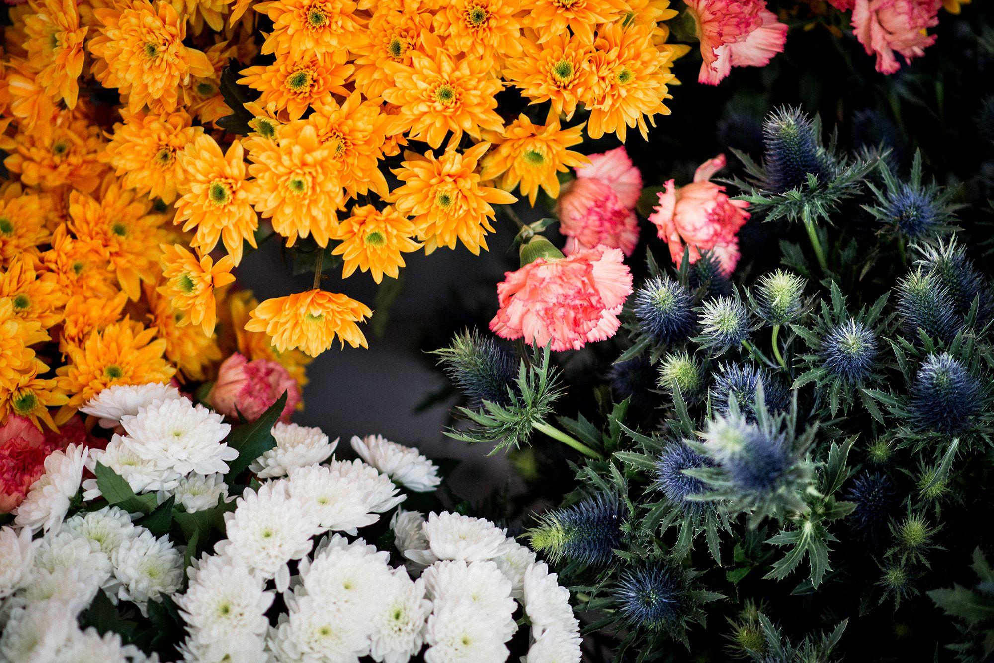 bunte Blumen für die Blumendeko